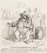 Image of A Would-be Representative Abroad - McLenan, John, 1827-1865